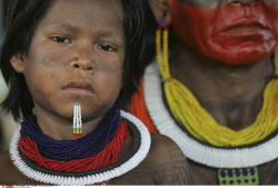 Indigenous people in danger
