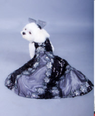 Dogs Couture Costumes