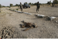 Nigeria fight against Boko Haram by Niger army forces