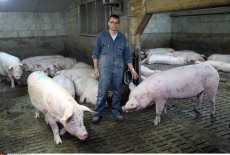 French Pig Farmer Thierry Marchal
