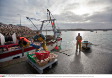 UNESCO GREEN CITIZENS EXHIBITION - A commitment to sustainable fishing in Brittany