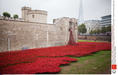 'Blood Swept Lands and Seas of Red' poppy installation at The Tower of London, Britain - 20 Sep 2014