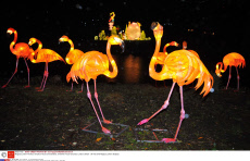 Magical Lantern Festival, Chiswick House and Gardens, Chiswick House Grounds, London, Britain - 06 Feb 2016