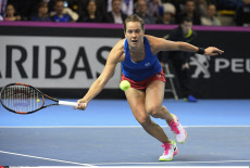 Fed Cup final-