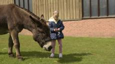 Donkey Helps Girl To Talk