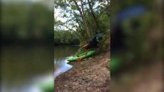 Kayaker Crash Into Tree