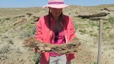 Alison Teal Discovers Dino Bone