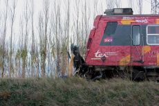 Millas: Four Children Dead As Train Collides With Bus In Southern France