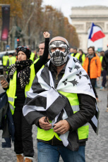 PARIS: Yellow Jackets demonstrator on Champs-Elysees