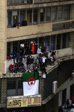 Algeria Protests