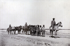 Mounted police constable with cattle killers, Australia