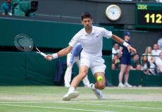 Wimbledon Championships 2019, Day Thirteen, Gentlemens Final, All England Lawn Tennis & Croquet Club, Church Rd, London, United Kingdom - 14th July 2019