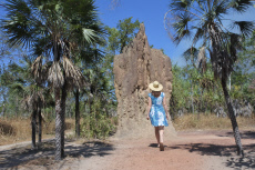 Woman tourist looking at Cathedral termite mound in Northern Territory Australia