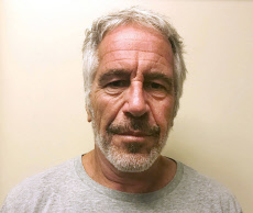 The Epstein case