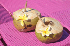 Two fresh coconut fruits drink with straws on a pink beach chairs