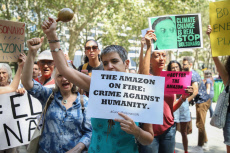 Amazon forest fires protest, New York, USA - 24 Aug 2019
