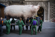 Action of Greenpeace against intensive farming and climate change Rome Italy