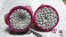 INTRICATE FRUIT CARVINGS