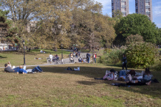 Activities in Central Park in New York
