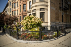 Trendy Park Slope Brooklyn neighbohood