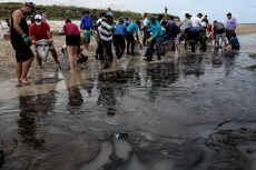 Brazil removes 525 tons oily waste from some 200 beaches