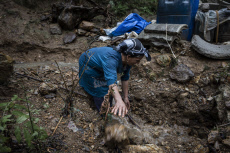 Heavy rains cause floods and landslides in Shaft, Iran - 22 Oct 2019