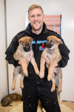 CALL 999 FOR THE NEW K9! POLICE DOG UNIT WELCOMES ITS NINE NEWEST AND CUTEST MEMBERS - A LITTER OF PAWS-ITIVELY PERFECT PUPS