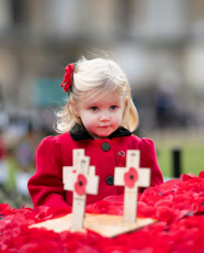 Westminster Abbey Field of Remembrance opening, London, UK - 07 Nov 2019