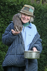 An otter-mad granny has lived with otters for 40 years