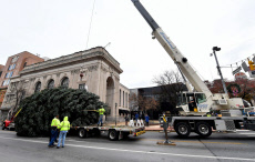 PA:  York City's Christmas tree arrives on Continental Square