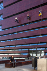 Passerby and facade climbers at the National Forum for Music in Wroclaw