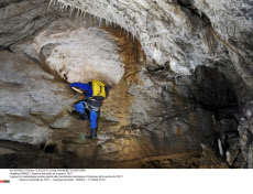 FRANCE : Reserve Naturelle de la grotte TM71