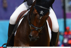 LONDON: Denis Mesples Competes in Olympic Equestrian Eventing