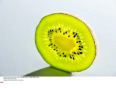 KIWI: illustration