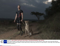 Oscar Pistorius Meets A Cheeta Called Anthony Pretoria South Africa Farm Inn Game Reserve. Credit Image: Andy Hooper/daily Mail/solo Syndication).