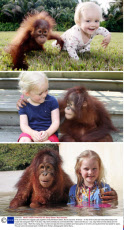 Emily with orangutan