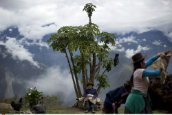 Peru Unearthing The Bodies