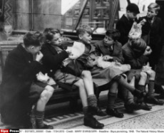 Boys picnicking, 1948.  The Natural History Museum, London.