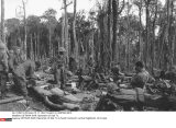 VIETNAM WAR: Operation of Dak To
