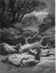 Vivien encloses Merlin in trees, by Gustave Dore, from Idylls of the King, (1832-1883), USA, Illinois, Chicago, Newberry Library